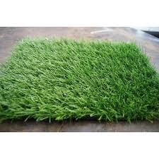 carpet grass. home carpet natural grass