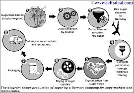 Ielts Academic Writing Task 1 Process Diagram On Sugar