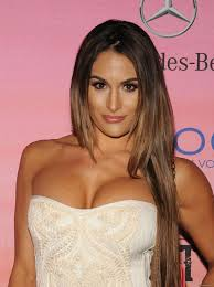 Bella Twins Celebrities Wallpapers and Photos core downloads.