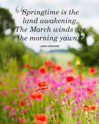 Beautiful Spring Quotes Best of 24 Beautiful Spring Quotes That Will Make You Smile