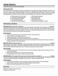 Resume For Cooks Inspiration Anatomy Of Chefs Cv Resume Example For Sous Chef Template