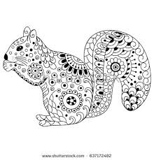 Small Picture Doodle Squirrel Stock Images Royalty Free Images Vectors