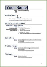 Blank Form Of Resumes Free Printable Blank Resume Forms Resume Resume Designs