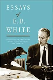 com essays of e b white perennial classics  com essays of e b white perennial classics 9780060932237 e b white books