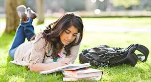 professional custom essay writing service pgjab professional custom essay writing service