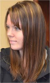 Medium Brown Hair Color With Highlights Lovely Medium Length Brown