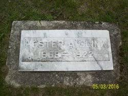 "Hester Adelaide ""Addie"" Tucker Clink (1858-1922) - Find A Grave Memorial"