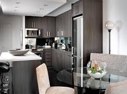 Contemporary Condo contemporary-kitchen