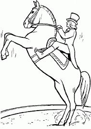 Kids N Fun Kleurplaat Paarden Circus Paard Meiden Paard