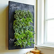 Chalkboard Wall Planter