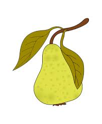 Small Picture Pear Coloring Pages for Kids to Color and Print