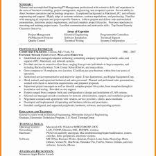 Delighted Cyber Security Consultant Resume Ideas Entry Level