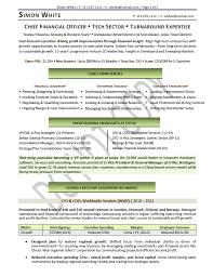 cfo resume sample chief financial oficer resume sample executive resume sample technology executive sample technology resume