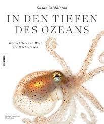 In den Tiefen des Ozeans: Die schillernde Welt der Wirbellosen: Amazon.de:  Susan Middelton: Bücher