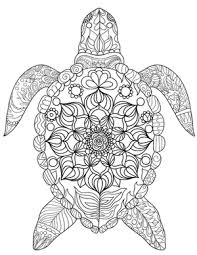 Small Picture Sea Turtle Coloring Page bullet journal ideas Pinterest Sea