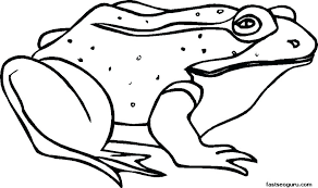 tree frog template free frog coloring pages free frog coloring pages flowers printable