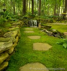 Growing moss between stepping stones | Moss and Stone Gardens