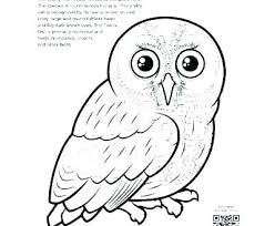 Baby Owl Coloring Pages To Print Trustbanksurinamecom