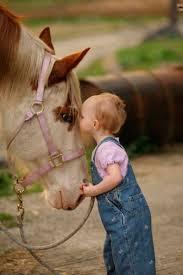 Resultado de imagem para beijo dum cavalo