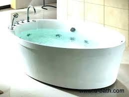 2 person bath tub soaking freestanding bathtub two bathtubs for a romantic couple