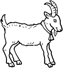 goat animal coloring pages