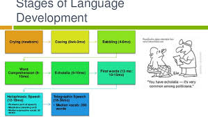 Stages Of Language Development Chart Language