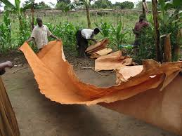 Afbeeldingsresultaat voor bark cloth fred mutebi