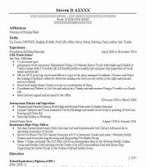 Cdl Truck Driver Resume Sample Driver Resumes LiveCareer Mesmerizing Resume For Cdl Driver