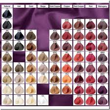Wella Hair Color Chart Clairol Hair Color Chart Hair Dye