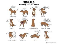 Pin On Dog Training Resources