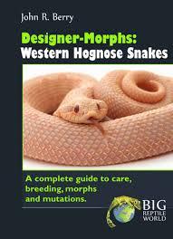 Designer Morphs Western Hognose Snakes Designer Morphs Western Hognose Snakes