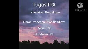 Klasifikasi Kupu-kupu, Nama : Vanessa Priscilla Shaw, Kelas : 7A, Absen :  27 - YouTube