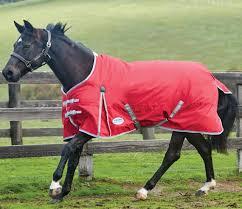 weatherbeeta comfitec classic standard lite horse turnout rug