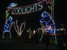 Focus Fox Log National Zoo Lights Date Night