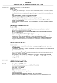 Support Developer Resume Samples Velvet Jobs