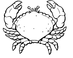 Small Picture Crab coloring pages free to print ColoringStar