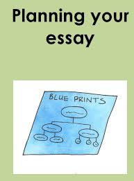 index of disability assets services essays  planning essay jpg