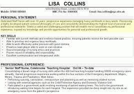 Resumes Personal Statements 8 Resume Personal Statement Examples Happy Tots
