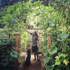 Small Picture 25 best Edible garden ideas on Pinterest Plants by post