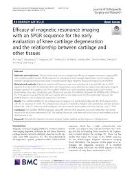 (PDF) Efficacy of magnetic resonance imaging with an SPGR ...