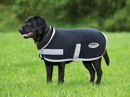 New Weatherbeeta Therapy Tec Dog Coat Weatherbeeta Australia