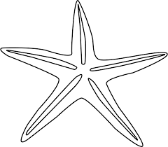 starfish clip art black and white. Delighful White Sea Turtle Clipart Black And White  Panda  Free  In Starfish Clip Art H