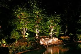 landscape lighting trees. we have made a commitment to utilize led lights for longevity and economy landscape lighting trees d