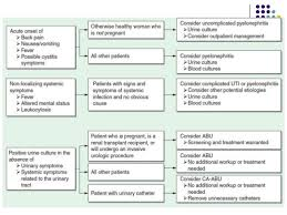 Pathophysiology Of Pyelonephritis In Flow Chart Urinary Tract Infection Uti