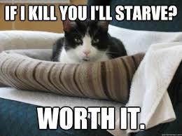 hateful cat memes | quickmeme via Relatably.com