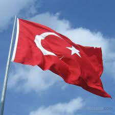 Gönder Bayrak - Türk Bayrağı Alpaka Kumaş 100x150Cm Fiyatı