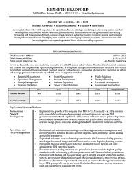 33 Complete Executive Resume Samples - Nadine Resume