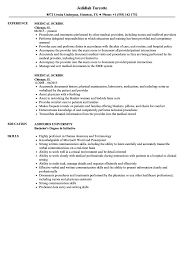 Resume Examples For Receptionist Medical Radiation Technologist Resume Examples Samples Receptionist 79