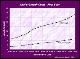 Baby First Year Weight Chart 42 Unbiased Growth Chart For Kittens