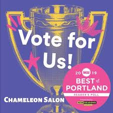 chameleon salon where customer service meets creativity